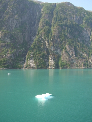 Tracy Arm Fiord - ice floes in blue-green water - color because of mineral content