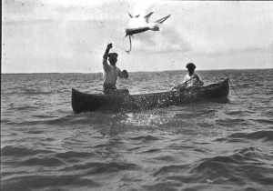 Early 1900s Tarpon fishing on a hand line (Florida Photographic Collection – Florida State Archives)
