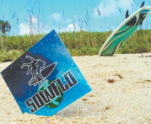 SowFlo is a laid back, island style band from the area that plays all over the state of Florida.