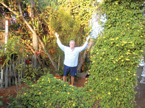 Plant vines on trellises to take your garden vertical. PHOTOS BY MIKE MALLOY/COASTAL BREEZE NEWS