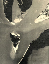 1977 Aerial of the former Coconut Island located due north of Hideaway Beach's Royal Marco Point, and west of Isle of Capri. SUBMITTED PHOTO