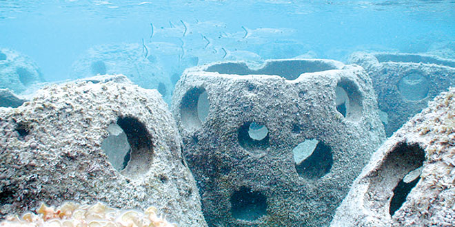 Artificial reefs. SUBMITTED PHOTO