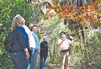 Treasure tour: Guided walks explore a varietyof habitats.