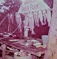 Drop Anchor fish cleaning station, located in the vacant northeast section of the park, circa 1971.