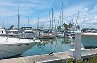 The Marco Island Marina, seen from the dock master's office. Photos By Gary Elliott